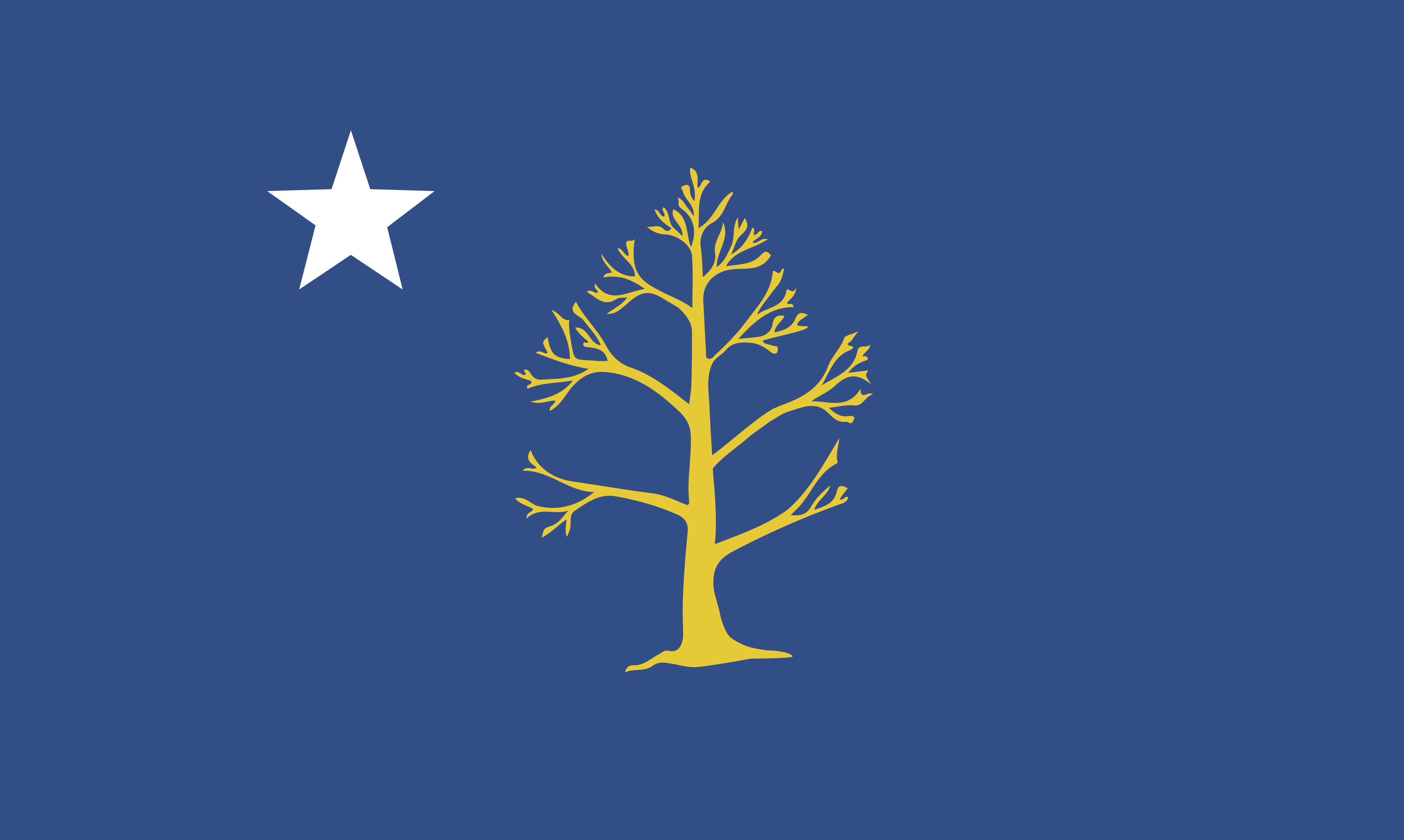 star and tree atlanta city flag